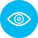 Real Time Action Corporate Vision Icon